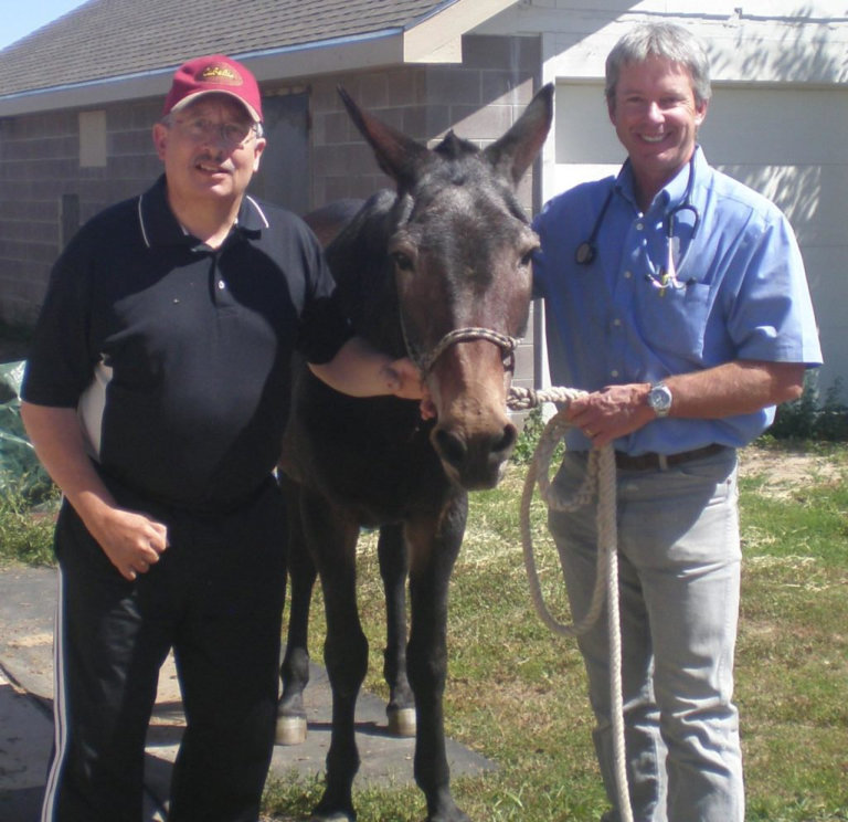 Dr. Woodall with healthy horse
