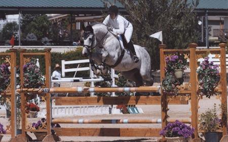 Equestrian horse show