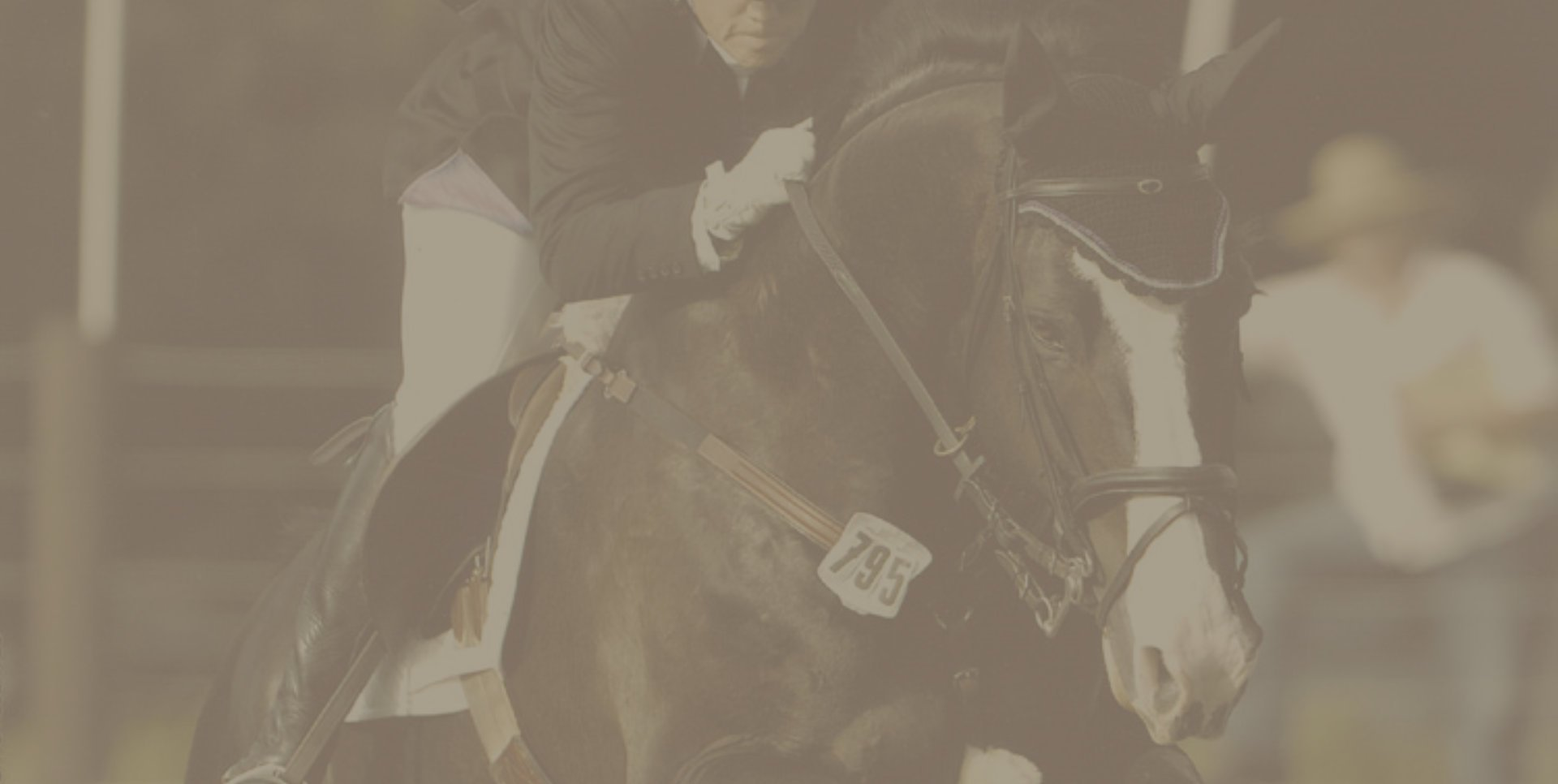 Equestrian header image